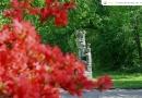 Tavasz a Sárvári Arborétumban – 2014