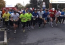 maraton_17
