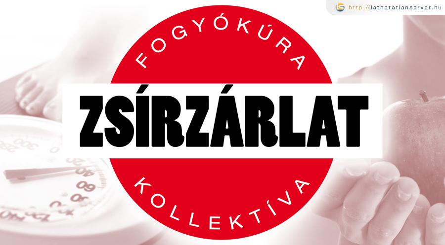 ZSZ_alap