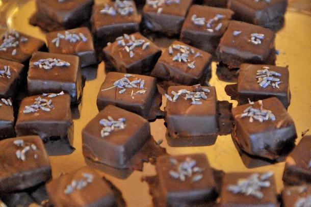 csoki_Eros